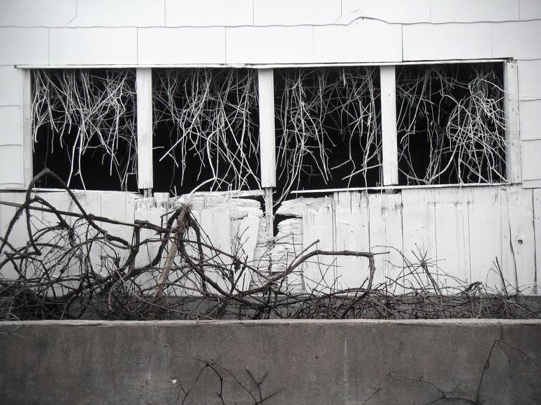 Barn Windows White Vine Row