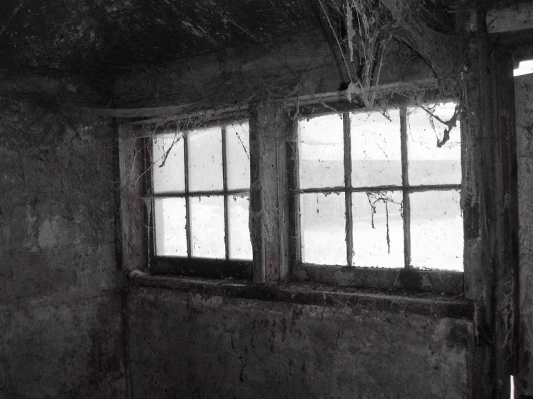 Feed Room Windows