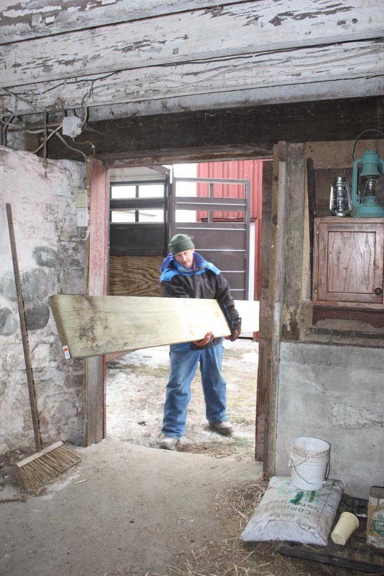 horse stall lumber